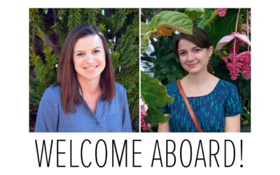 New BIAAZ Board Members